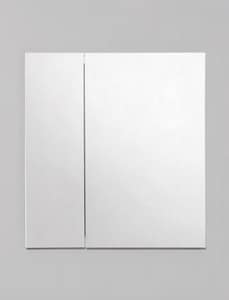 Robern R3™ 26 x 24 x 4-3/4 in. Plain Glass Double Door Medicine Cabinet RRC2426D4FP2