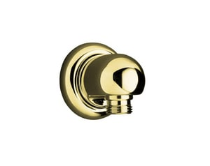 Kohler MasterShower® Hand Shower in Vibrant Polished Brass K9513-PB