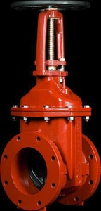 American Flow Control 2500 Series 3 in. Flanged Ductile Iron OS&Y Resilient Wedge Gate Valve AFC2503DOSYFFOL