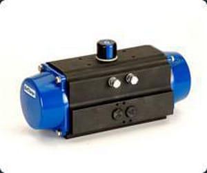 Deltech Controls Series 21 Pneumatic Aluminum Actuator D2111512C10S0