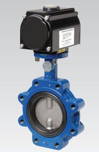 Pentair Valves & Controls Series 60 2 in. Cast Iron EPDM Butterfly Valve P60WCSP1