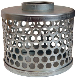Dixon Valve & Coupling 2 in. Standard Thread Round Hole Strainer DRHS25 at Pollardwater