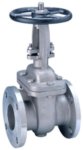 FNW® Figure 452A 3 in. 316L Stainless Steel Flanged Gate Valve FNW452M