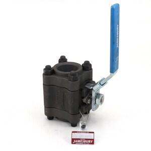 Jamesbury Series 4000 1/2 in. Carbon Steel Standard Port NPT 2500# Ball Valve J4A2236XT1