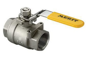 Merit Brass V210FP 1 in. 316 Stainless Steel Full Port Threaded 1000# Ball Valve MV210FP1