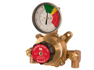 Leonard Valve Eco-Mix™ 1/2 in. Thermostat Mixing Valve in Rough Finish for Safety Shower System LTALFRF