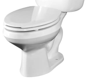 Briggs Plumbing Products Altima™ 1.6 gpf Elongated Floor Mount Toilet Bowl in White B4325WH