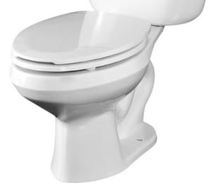 Briggs Plumbing Products Altima™ 1.6 gpf Elongated Floor Mount Toilet Bowl in White B4328WH