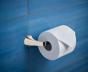 Brizo Sotria™ Wall Mount Toilet Tissue Holder in Polished Chrome D695050