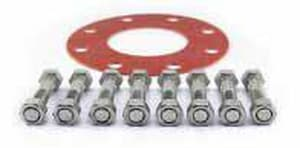 12 in. 316 Stainless Steel Mechanical Joint Bolt and Gasket IMJSS316BGP12