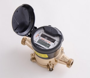 Neptune Technology Group T-10® 3/4 in. T-10 Bronze Meter - Cubic Foot NED2C21R8F2S088