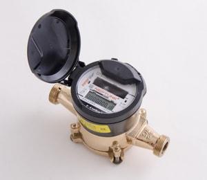 Neptune Technology Group E-Coder® 1 in. T-10 Meter - US Gallons NED2F11REG1