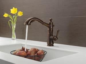 Delta Faucet Cassidy™ Single Handle Pull Out Kitchen Faucet in Venetian Bronze D4197RBDST