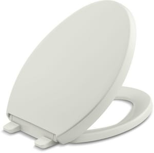 Kohler Reveal® Quiet-Close™ Elongated Closed Front With Cover in Dune K4008-NY