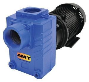 AMT 1-1/2 in. Cast Iron Self-Priming Centrifugal Pump A282D95 at Pollardwater