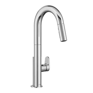 American Standard Beale™ Single Handle Pull Down Kitchen Faucet A4931300