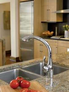 Hansgrohe Allegro E Single Handle Pull Out Kitchen Faucet in Polished Chrome H06461000