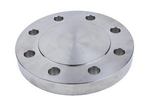 14 in. Blind 150# 316L Stainless Steel Raised Face Flange IS6LRFBF14