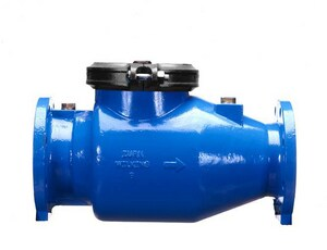 Wilkins Regulator Model 310 Epoxy Coated Ductile Iron Flanged 175 psi Backflow Preventer W3101INCH