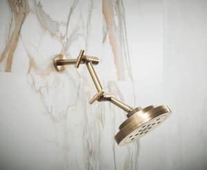 Brizo Litze™ Showerarm and Flange in Luxe Gold DRP81434GL