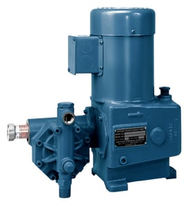 Neptune Chemical Pump Company 500V Series 1/2 in. 7 gph 1/3 hp 115V 700 psi NPT 316 Stainless Steel, PTFE and Viton Centrifugal Pump N525VSN3 at Pollardwater