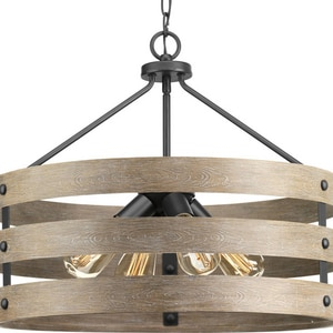 Progress Lighting Gulliver 21-5/8 in. 4-Light Pendant in Graphite PP500023143