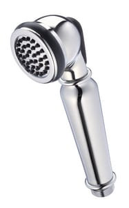 Danze Traditional Rear/Top Hand Held Showerhead in Polished Chrome DD492100