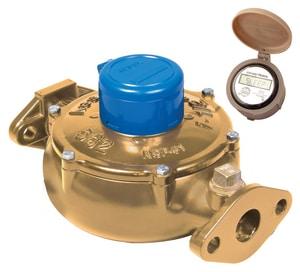 420 Bronze Series Lead Law Compliant 5/8 X 3/4 CF Water Meter 5 FT MV0GB1911