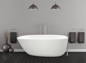 Hydro Systems Daniela 58 x 30 in. Freestanding Bathtub in White HDLA5830GTOWHI