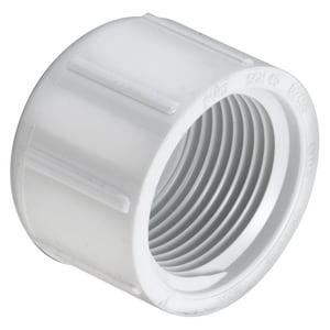 1 in. Threaded Schedule 40 Straight PVC Cap S448010