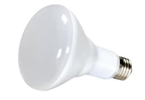 Satco 10W BR30 Dimmable LED Light Bulb with Medium Base SS9628