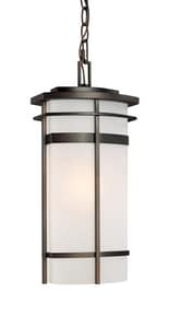 Capital Lighting Fixture Lakeshore 100W 1-Light Medium E-26 Incandescent Outdoor Hanging Lantern in Old Bronze C9885OB