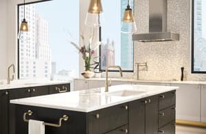 Brizo Litze™ Single Handle Pull Down Kitchen Faucet in Luxe Gold D63064LFGL