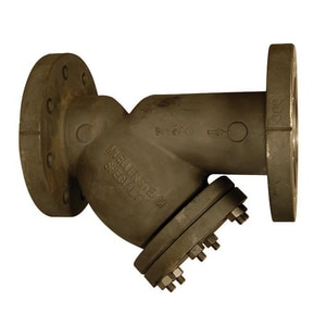 Mueller Steam Specialty Model 782 4 in. 300# Carbon Steel Flanged Perforated Wye Strainer M782CSP