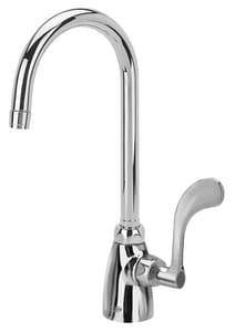 Zurn AquaSpec® Single Lever Handle Lab Faucet with Gooseneck Standing Pilot in Polished Chrome ZZ825B4XL