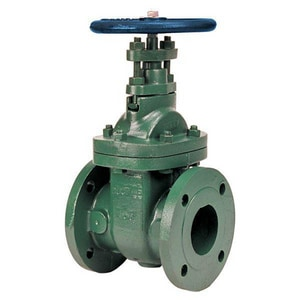 F-639-31 Ductile Iron Flanged Gate Valve NF63931