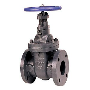 NIBCO F-619 4 in. Cast Iron Flanged Gate Valve NF619SON