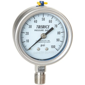 H.O. Trerice 700 Series 2-1/2 x 1/4 in. 30 psi/kpa 250F Stainless Steel Pressure Gauge T700SS2502LD