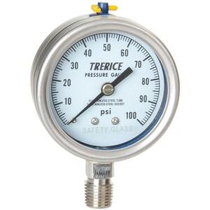 H.O. Trerice 700 Series 2-1/2 x 1/4 in. 30 psi Brass Pressure Gauge T700B2502LA