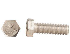 Endries International 3/4 x 3-1/2 in. Zinc Hex Head Cap Screw E2CSV