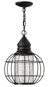 Hinkley Lighting 11 in. 50W 1-Light GU10 Compact Fluorescent Hanging Lantern in Black H2252BK