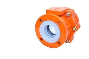 1 in. Ductile Iron Flanged Check Valve XLC12BG