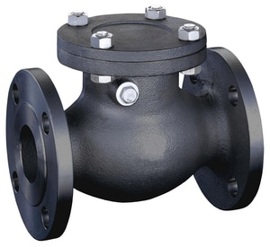 FNW 571 2 in. Carbon Steel Flanged Swing Check Valve FNW571
