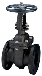 FNW® Figure 552 2-1/2 in. Carbon Steel Flanged Gate Valve FNW552L at Pollardwater