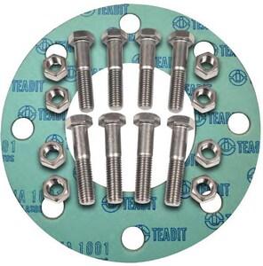 FNW® 2-1/2 in. 150# Zinc Non-Asbestos 1/16 Ring Gasket Nut, Bolt, Gasket Set FNWNBGZ1NAR6L