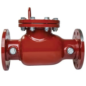Ames Fire & Waterworks Series 1000DCV 8 in. Stainless Steel Flanged Check Valve A1000DCVEPXX