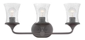 Hinkley Lighting Thistledown 24 x 10-1/2 in. 300W 3-Light Medium E-26 Vanity Fixture with Clear Seeded Glass in Buckeye Bronze H51803KZ