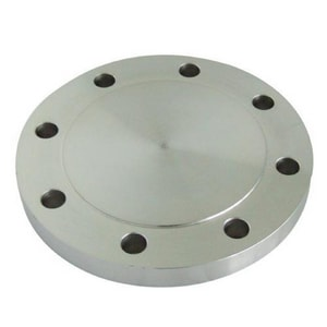 1 in. 300# Blind Stainless Steel Flange DS34PBYHG