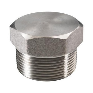 2 in. HEX 3000# 316L Stainless Steel Plug DS6L3THPKE