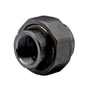 1 in. Threaded 6000# Forged Steel Union IFSSS6TUG